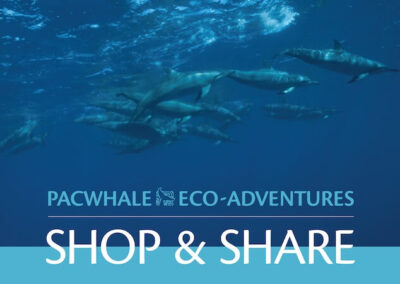 PacWhale Eco-Adventures Shop & Share