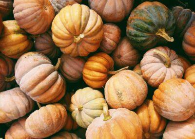 Fall Food Drive Challenge